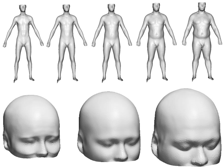 Male mannekins with increasing body mass index and S/M/L-headforms for wearable products